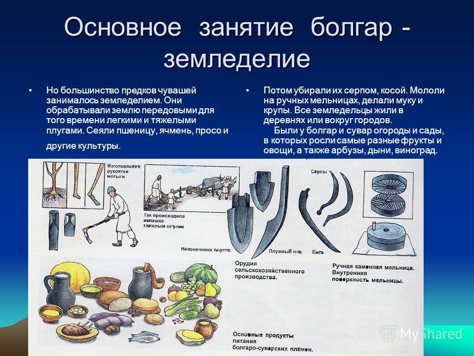 Основное занятие болгар - земледелие Но большинство предков чувашей занималось земледелием. Они обрабатывали землю передовыми для того времени легкими и тяжелыми плугами. Сеяли пшеницу, ячмень, просо и другие культуры. Потом убирали их серпом, косой.