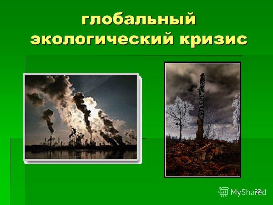 22 глобальный экологический кризис