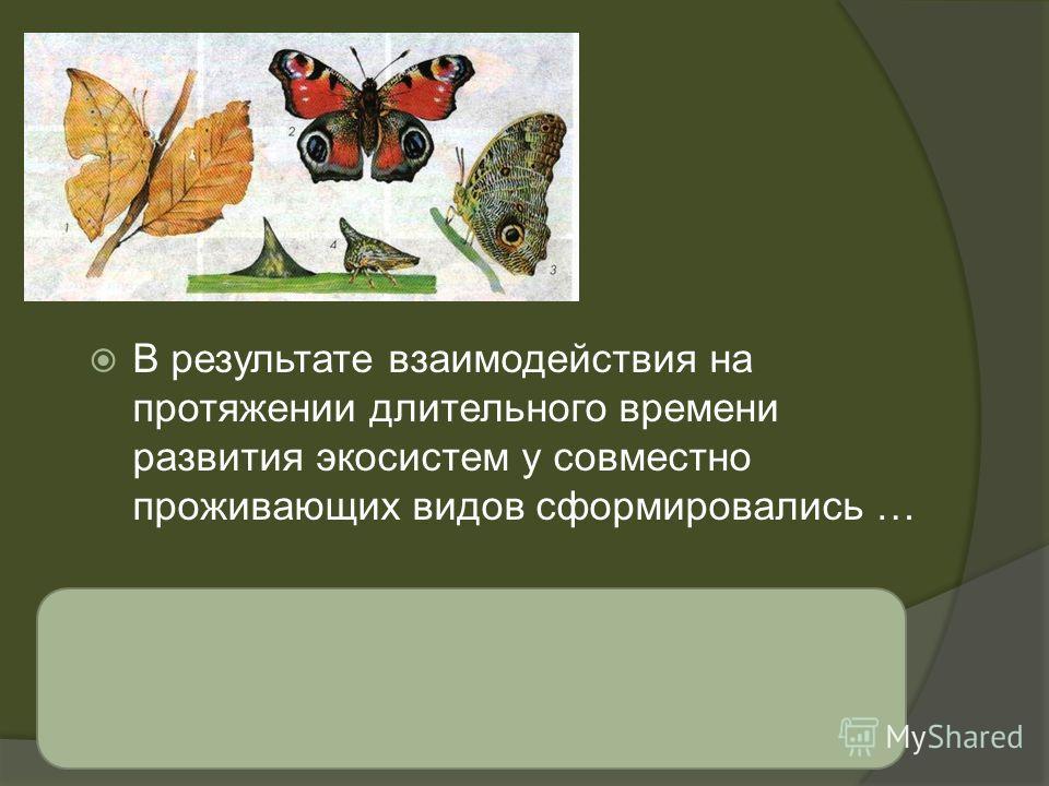 взаимно приспособительные свойства (коадаптации) В результате взаимодействия на протяжении длительного времени развития экосистем у совместно проживающих видов сформировались …