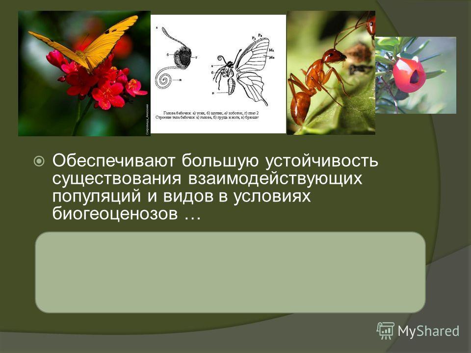 взаимные адаптации Обеспечивают большую устойчивость существования взаимодействующих популяций и видов в условиях биогеоценозов …