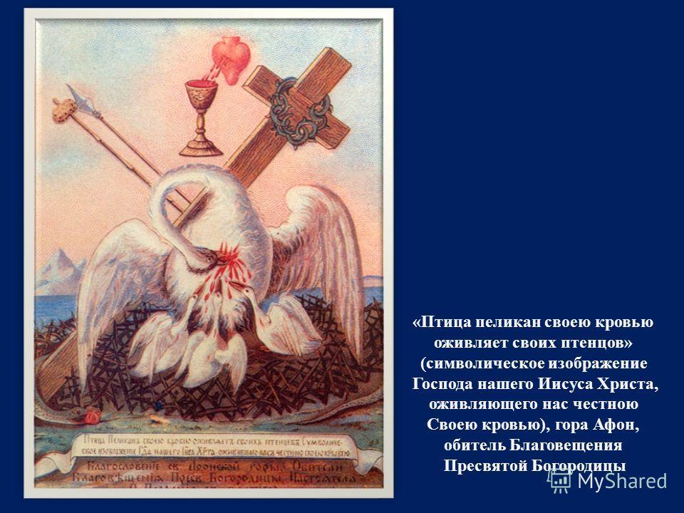 « Птица пеликан своею кровью оживляет своих птенцов » ( символическое изображение Господа нашего Иисуса Христа, оживляющего нас честною Своею кровью ), гора Афон, обитель Благовещения Пресвятой Богородицы
