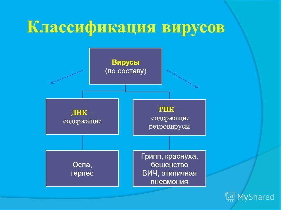 Функции частей вируса: Части вирусаСердцевинаКапсид 1.Химические вещества ДНК или РНК Белок 2. Функция Хранение наследственной Защитная и информации ферментативная