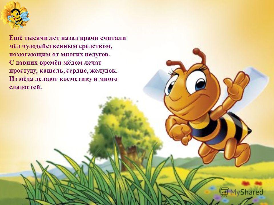 Данное насекомое было выбрано мною для исследования по следующим фактам, подтверждающим уникальность и необычность его по сравнению с другими насекомыми: Пчела появилась на земле на много тысяч лет раньше человека. Пчелы «математики»: соты, построенн