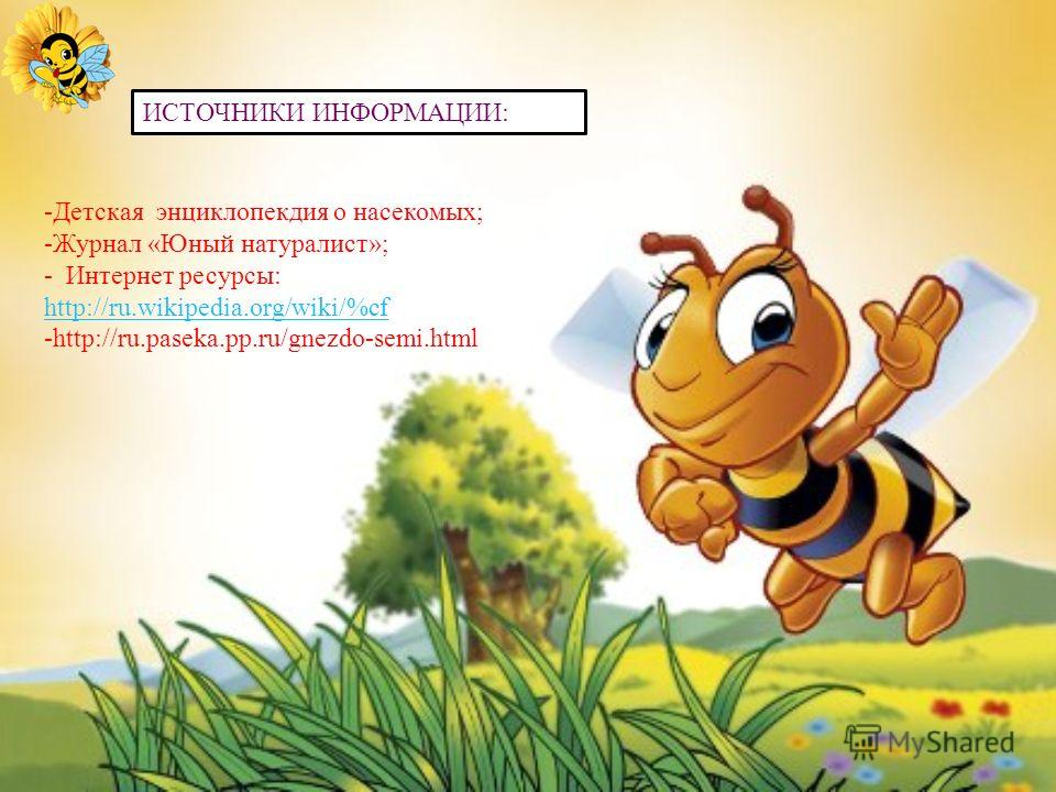 Кроме меда пчелы дают нам еще массу не менее полезных продуктов: это и маточное молочко, и пчелиный яд, и прополис и воск, и перга. Благодарное человечество поставило пчеле памятник. И даже не один, а целых три: два в Японии и один в Польше..