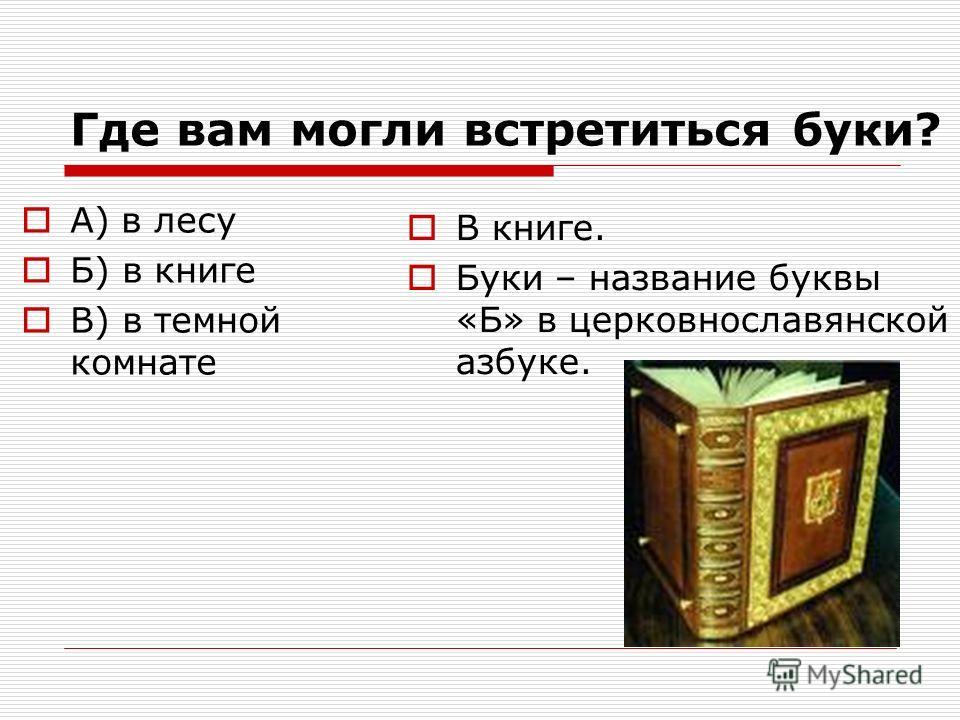Где вам могли встретиться буки? А) в лесу Б) в книге В) в темной комнате В книге. Буки – название буквы «Б» в церковнославянской азбуке.