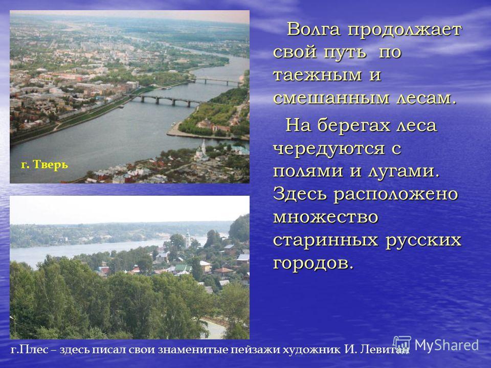 Волга продолжает свой путь по таежным и смешанным лесам. Волга продолжает свой путь по таежным и смешанным лесам. На берегах леса чередуются с полями и лугами. Здесь расположено множество старинных русских городов. На берегах леса чередуются с полями
