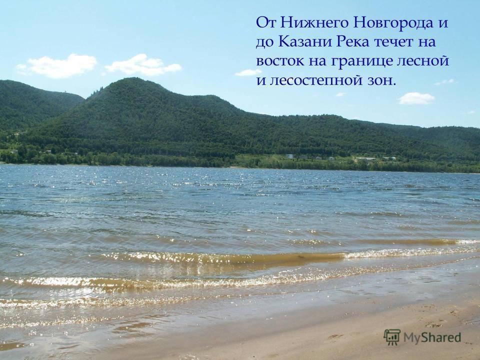 От Нижнего Новгорода и до Казани Река течет на восток на границе лесной и лесостепной зон.
