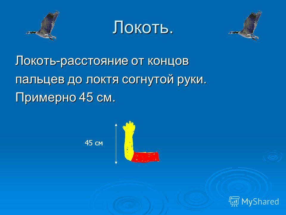 Фут. Фут (англ. Foot нога (ступня))- мера длины в различных странах; в английской системе мер и в России до введения метрической системы мер – 12 дюймов (30,48 см).