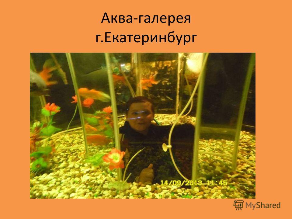 Аква-галерея г.Екатеринбург