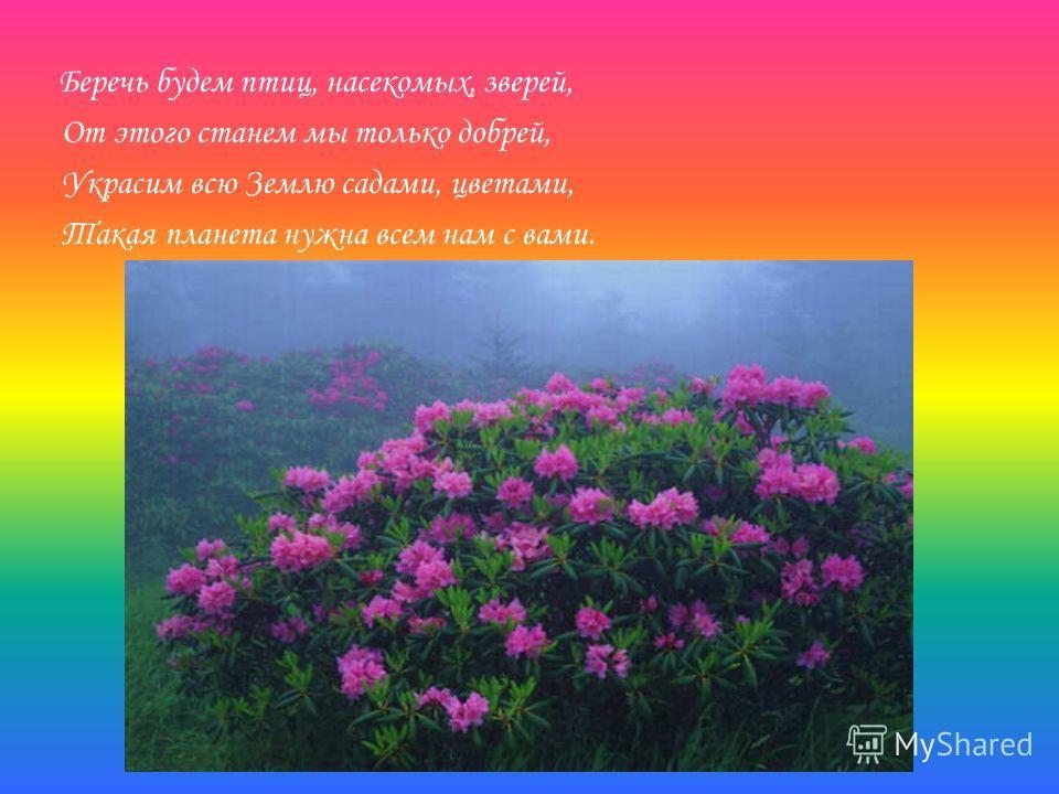 Беречь будем птиц, насекомых, зверей, От этого станем мы только добрей, Украсим всю Землю садами, цветами, Такая планета нужна всем нам с вами.