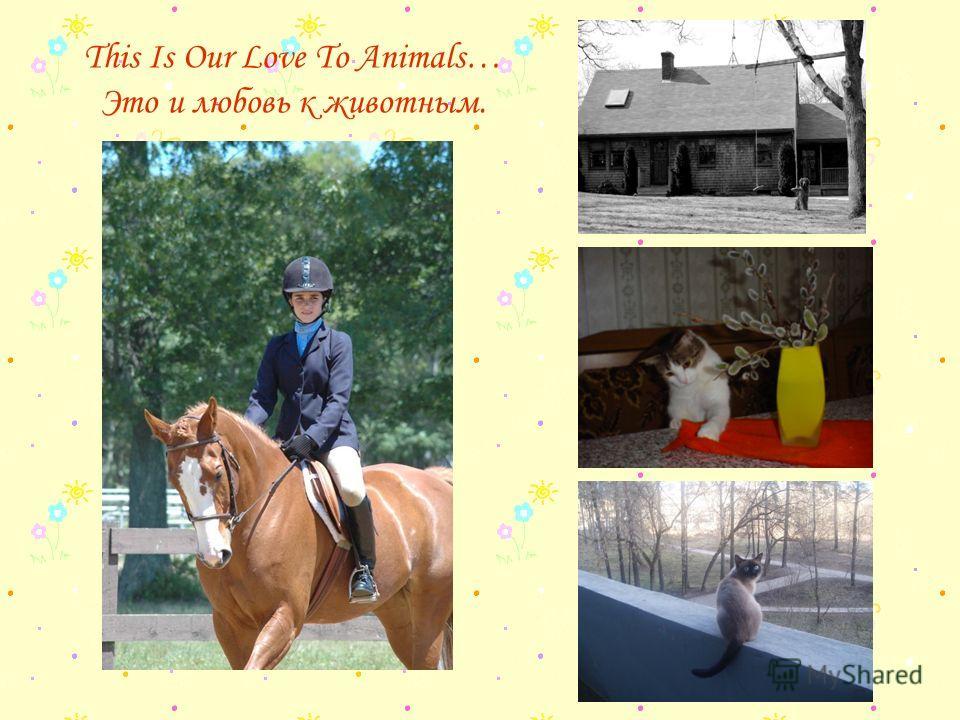 This Is Our Love To Animals… Это и любовь к животным.