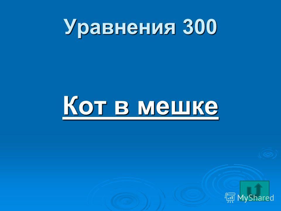 Уравнения 300 Кот в мешке