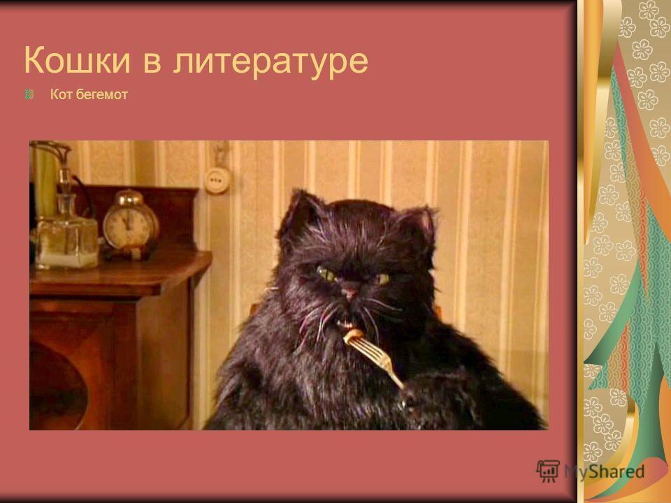 Кошки в литературе Кот бегемот