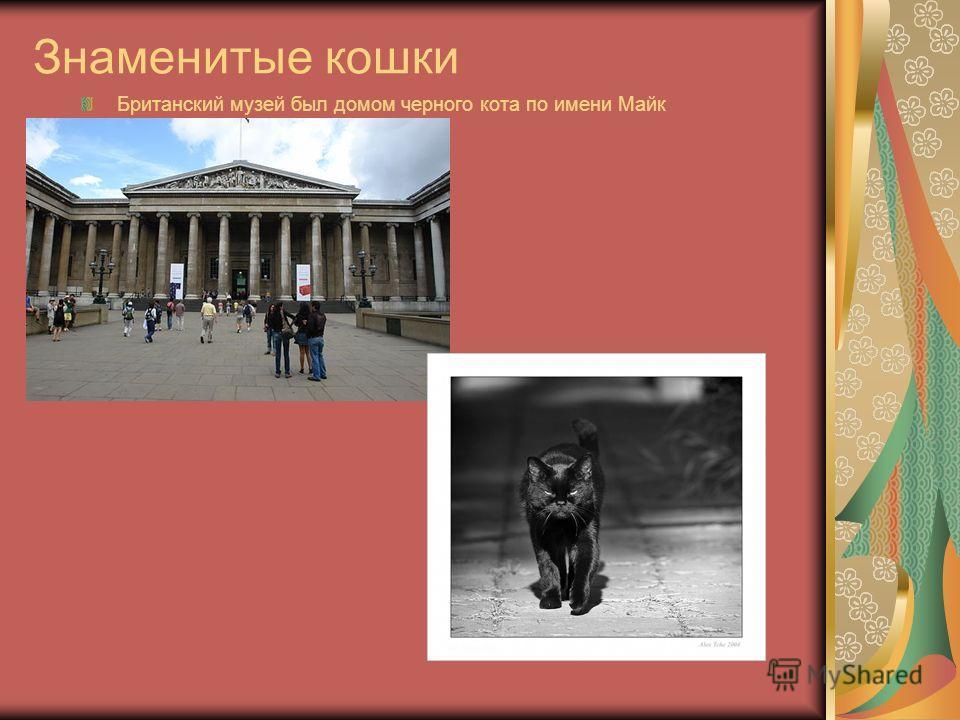 Знаменитые кошки Британский музей был домом черного кота по имени Майк
