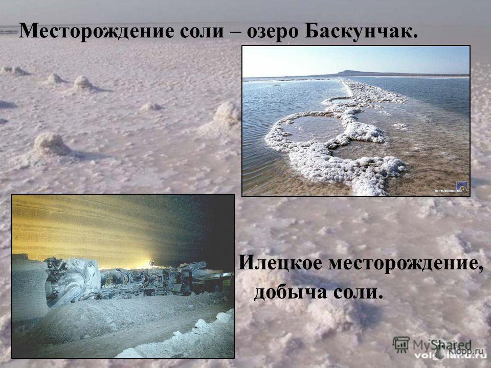 Месторождение соли – озеро Баскунчак. Илецкое месторождение, добыча соли.