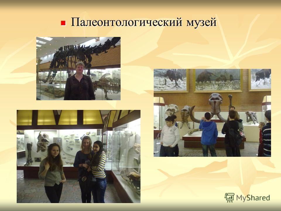 Палеонтологический музей Палеонтологический музей
