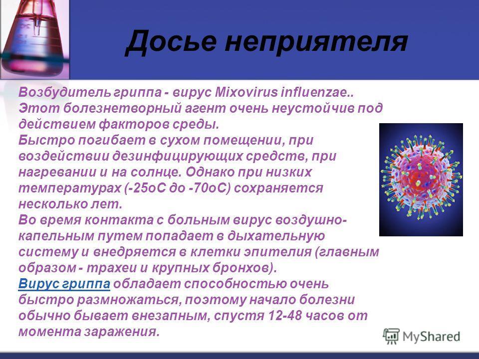 Досье неприятеля Возбудитель гриппа - вирус Mixovirus influenzae.. Этот болезнетворный агент очень неустойчив под действием факторов среды. Быстро погибает в сухом помещении, при воздействии дезинфицирующих средств, при нагревании и на солнце. Однако