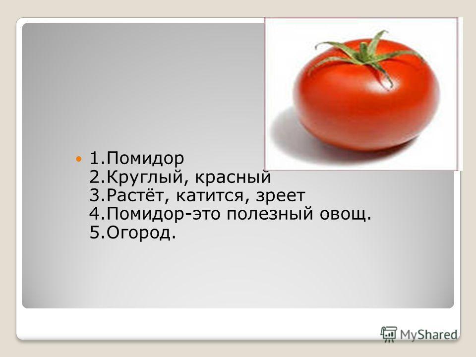 1.Помидор 2.Круглый, красный 3.Растёт, катится, зреет 4.Помидор-это полезный овощ. 5.Огород.