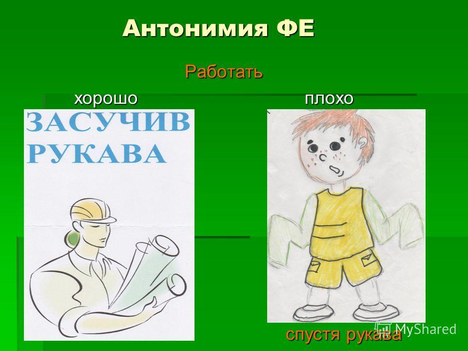 Антонимия ФЕ Антонимия ФЕ Работать Работать хорошо плохо хорошо плохо спустя рукава спустя рукава