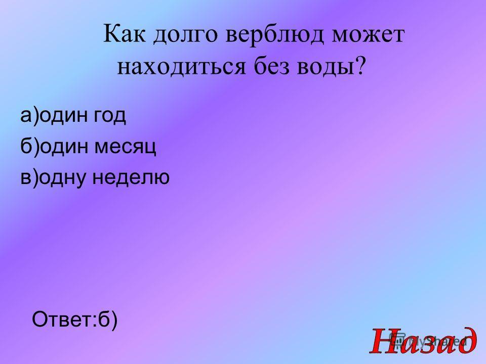 Как долго верблюд может находиться без воды? а)один год б)один месяц в)одну неделю Ответ:б)