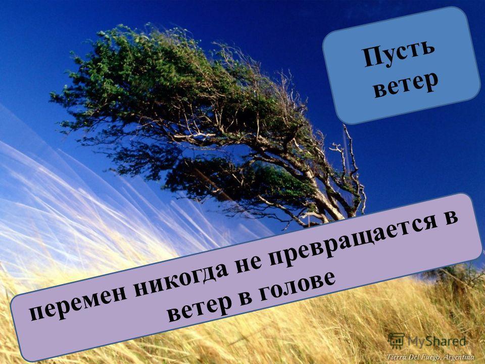 перемен никогда не превращается в ветер в голове Пусть ветер