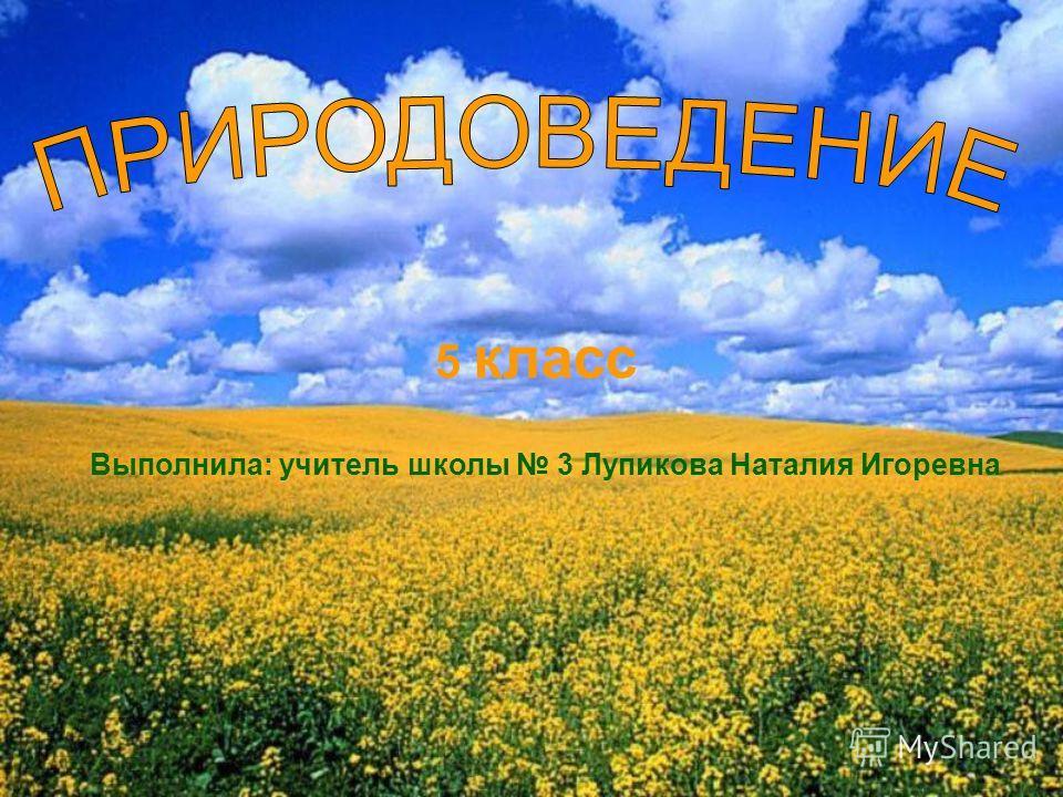 5 класс Выполнила: учитель школы 3 Лупикова Наталия Игоревна