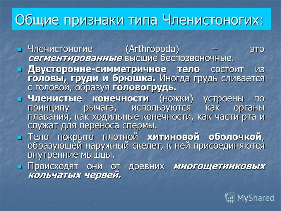 Общие признаки типа Членистоногих: Членистоногие (Arthropoda) – это сегментированные высшие беспозвоночные. Членистоногие (Arthropoda) – это сегментированные высшие беспозвоночные. Двусторонне-симметричное тело состоит из головы, груди и брюшка. Иног