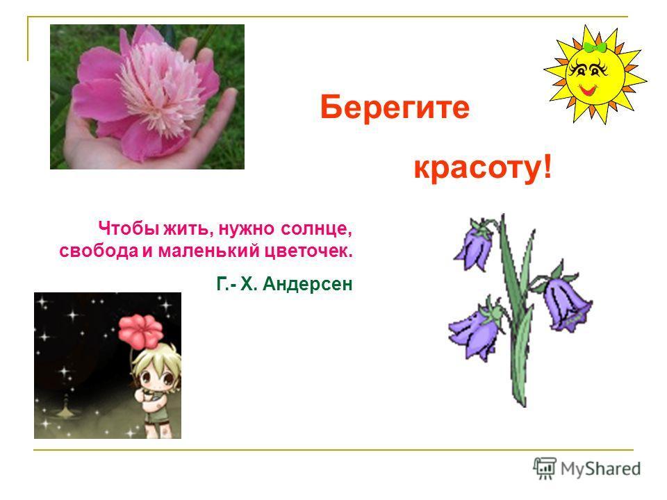 Чтобы жить, нужно солнце, свобода и маленький цветочек. Г.- Х. Андерсен Берегите красоту!