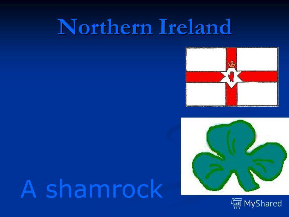 Northern Ireland A shamrock