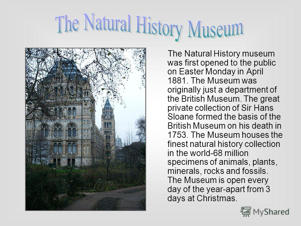 The Natural History museum was first opened to the public on Easter Monday in April 1881. The Museum was originally just a department of the British Museum. The great private collection of Sir Hans Sloane formed the basis of the British Museum on his