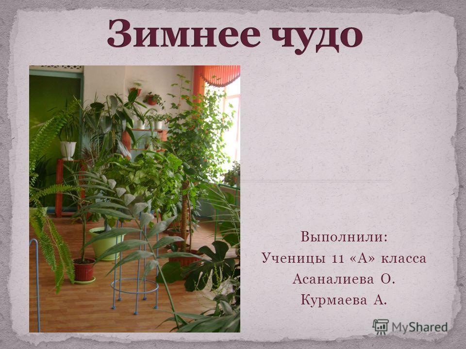 Выполнили: Ученицы 11 «А» класса Асаналиева О. Курмаева А.