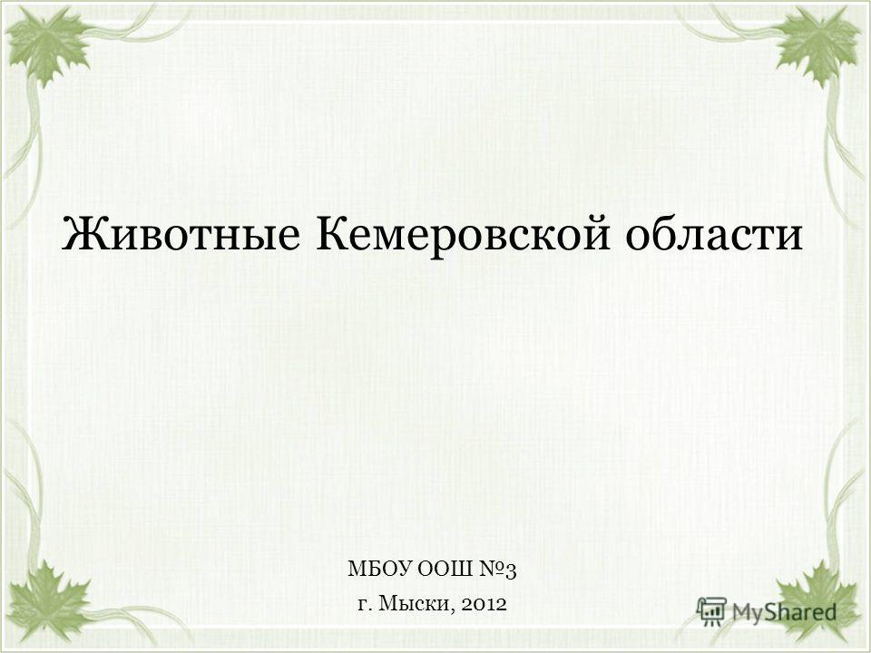Животные Кемеровской области г. Мыски, 2012 МБОУ ООШ 3