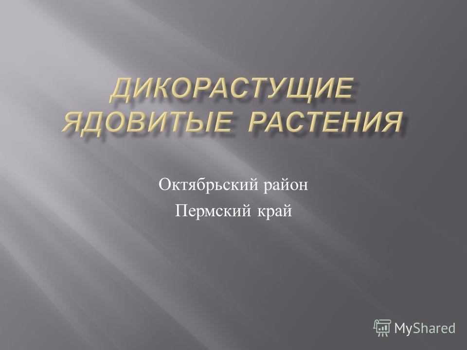 Октябрьский район Пермский край