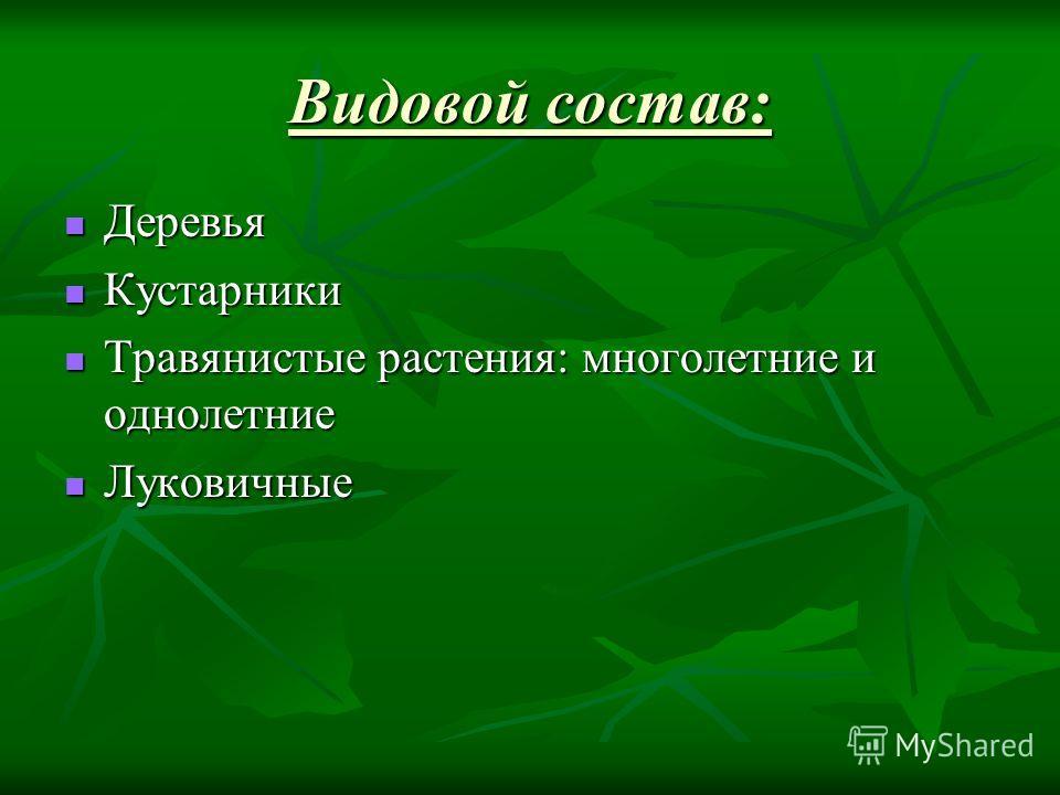 Видовой состав: Деревья Деревья Кустарники Кустарники Травянистые растения: многолетние и однолетние Травянистые растения: многолетние и однолетние Луковичные Луковичные