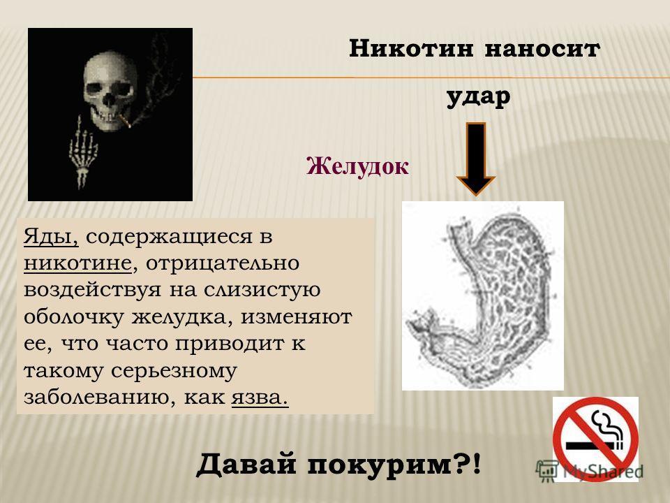 Желудок Никотин наносит удар Яды, содержащиеся в никотине, отрицательно воздействуя на слизистую оболочку желудка, изменяют ее, что часто приводит к такому серьезному заболеванию, как язва. Давай покурим?!