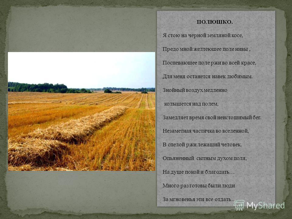 ПОЛЮШКО. Я стою на черной земляной косе, Предо мной желтеющее поле нивы, Поспевающее поле ржи во всей красе, Для меня останется навек любимым. Знойный воздух медленно колышется над полем, Замедляет время свой неистощимый бег. Незаметная частичка во в