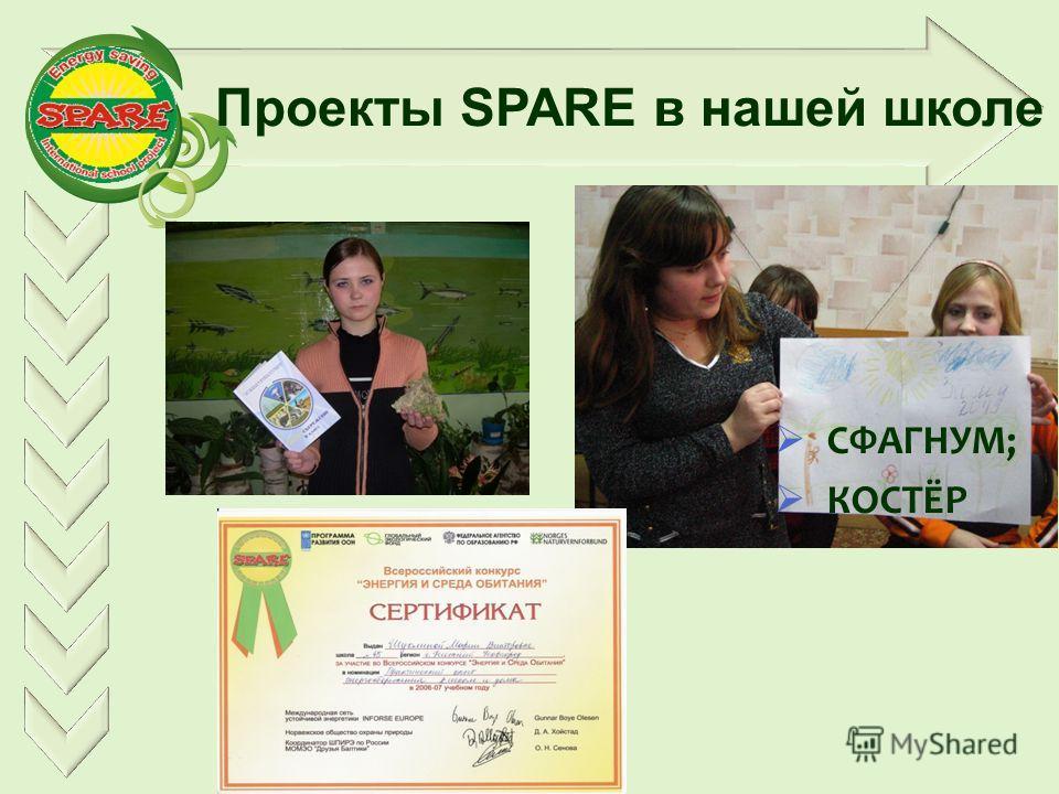 Проекты SPARE в нашей школе СФАГНУМ; КОСТЁР