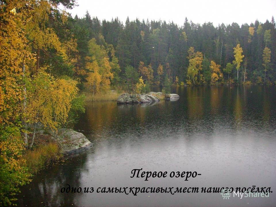 Первое озеро- одно из самых красивых мест нашего посёлка.