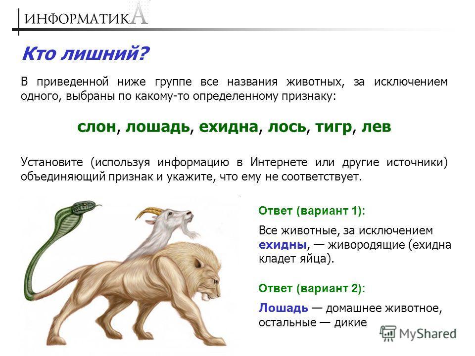 Кто лишний? В приведенной ниже группе все названия животных, за исключением одного, выбраны по какому-то определенному признаку: слон, лошадь, ехидна, лось, тигр, лев Установите (используя информацию в Интернете или другие источники) объединяющий при