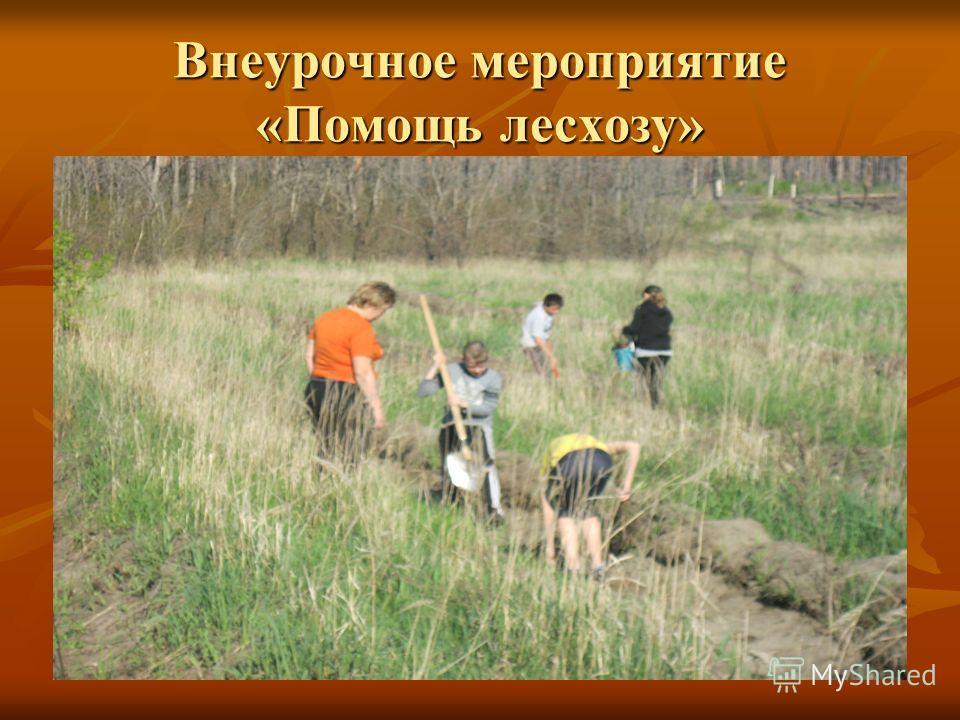 Внеурочное мероприятие «Помощь лесхозу»