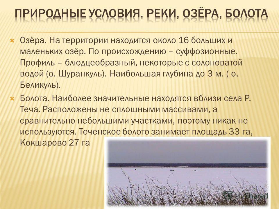 Озёра. На территории находится около 16 больших и маленьких озёр. По происхождению – суффозионные. Профиль – блюдцеобразный, некоторые с солоноватой водой (о. Шуранкуль). Наибольшая глубина до 3 м. ( о. Беликуль). Болота. Наиболее значительные находя