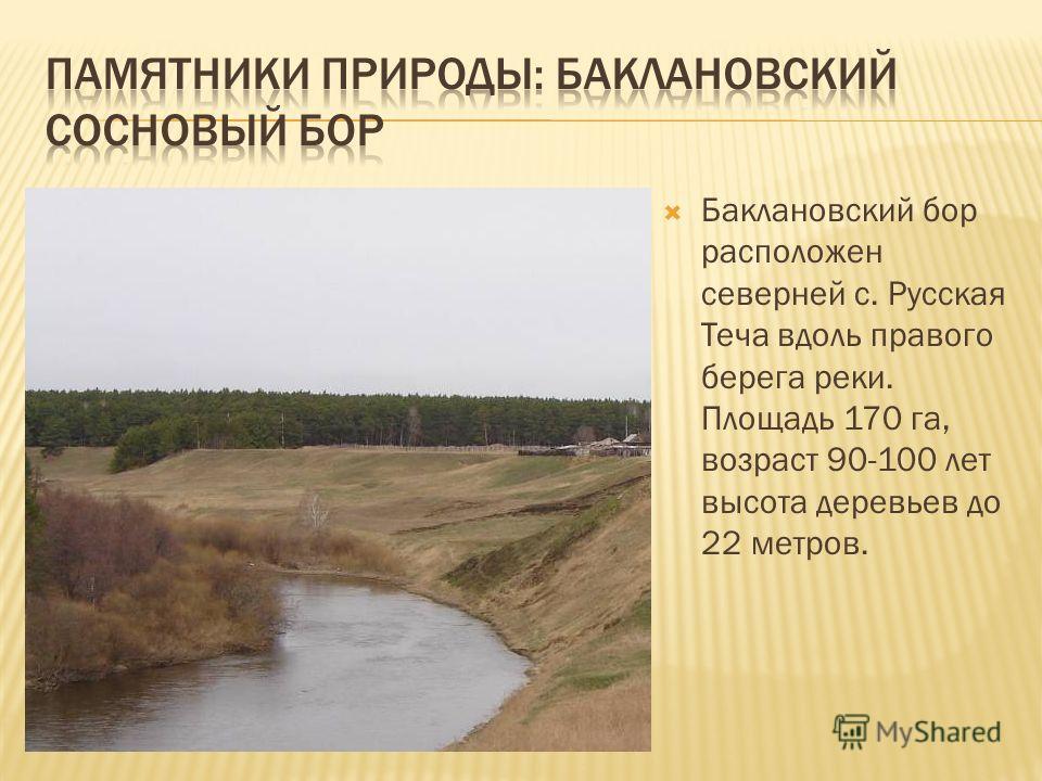 Баклановский бор расположен северней с. Русская Теча вдоль правого берега реки. Площадь 170 га, возраст 90-100 лет высота деревьев до 22 метров.