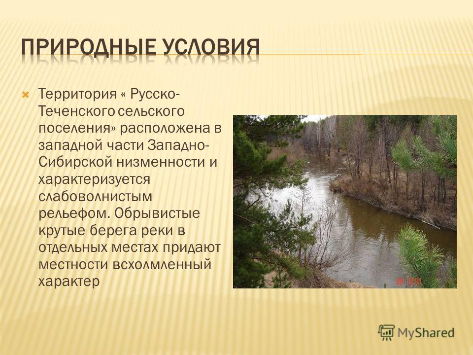 Территория « Русско- Теченского сельского поселения» расположена в западной части Западно- Сибирской низменности и характеризуется слабоволнистым рельефом. Обрывистые крутые берега реки в отдельных местах придают местности всхолмленный характер