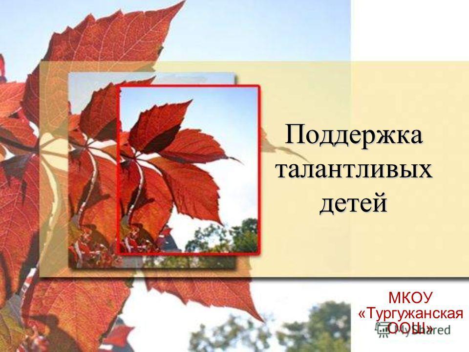 1 Поддержка талантливых детей МКОУ «Тургужанская ООШ»