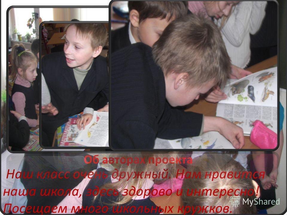 Об авторах проекта Наш класс очень дружный. Нам нравится наша школа, здесь здорово и интересно! Посещаем много школьных кружков.