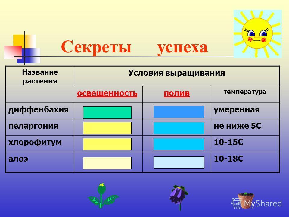 Секретыуспеха Название растения Условия выращивания освещенностьполив температура диффенбахияумеренная пеларгонияне ниже 5С хлорофитум10-15С алоэ10-18С