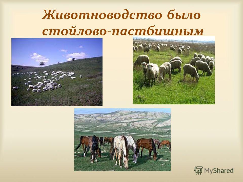 Животноводство было стойлово-пастбищным
