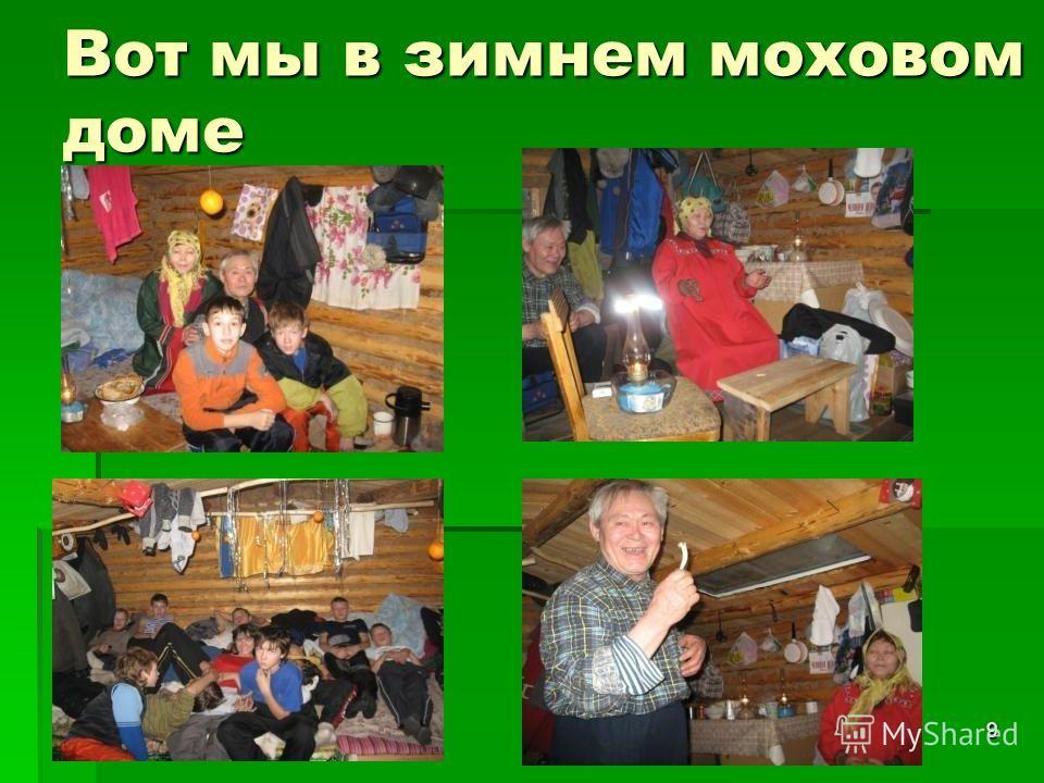 9 Вот мы в зимнем моховом доме