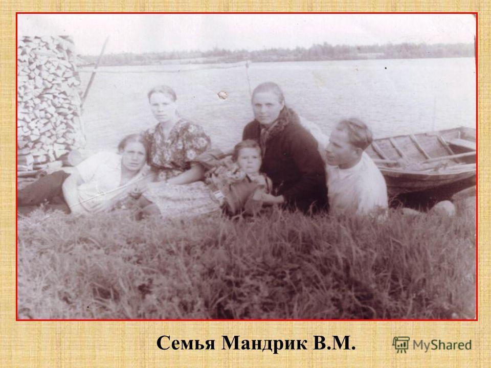 Семья Мандрик В.М.