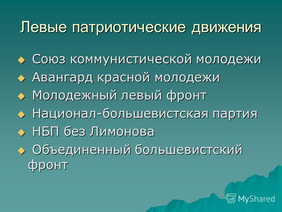 Левые патриотические движения Союз коммунистической молодежи Союз коммунистической молодежи Авангард красной молодежи Авангард красной молодежи Молодежный левый фронт Молодежный левый фронт Национал-большевистская партия Национал-большевистская парти